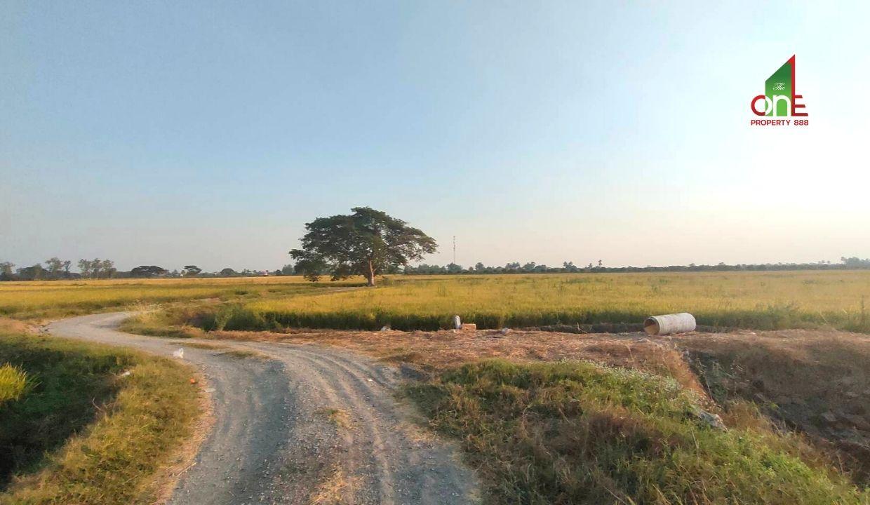ที่ดิน 10 ไร่ 3 งาน 87 ตร.ว.ท่าเสด็จ 3 แยก 5 ตำบลสระแก้ว อำเภอเมืองสุพรรณบุรี จังหวัดสุพรรณบุรี
